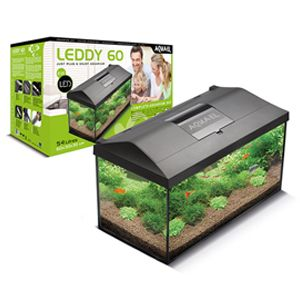 Leddy 60 Tropical - Black